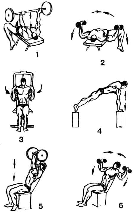 Комплекс упражнений для грудных в домашних условиях