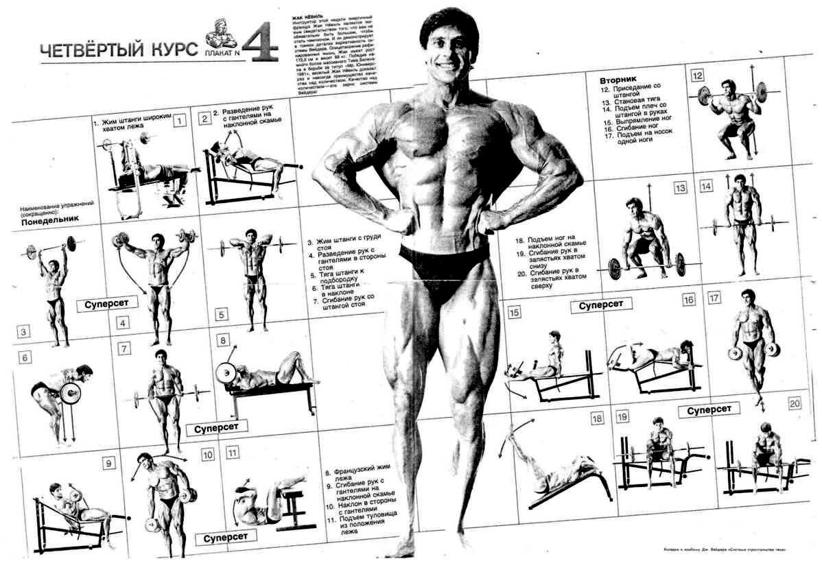 Бодибилдинг схема тренировок фото