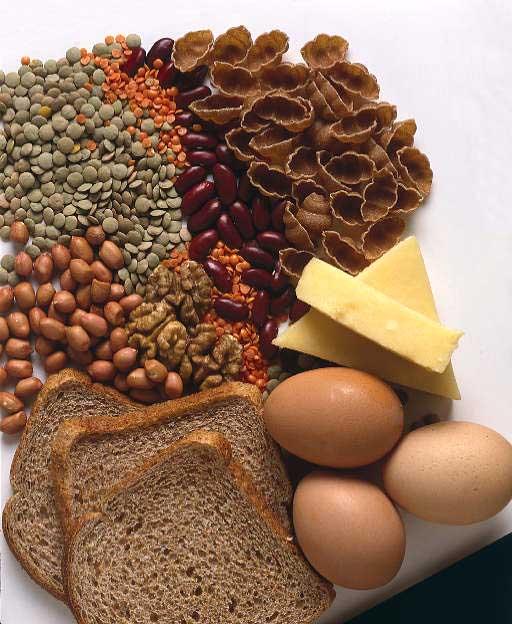 какой белок лучше для похудения спортивное питание