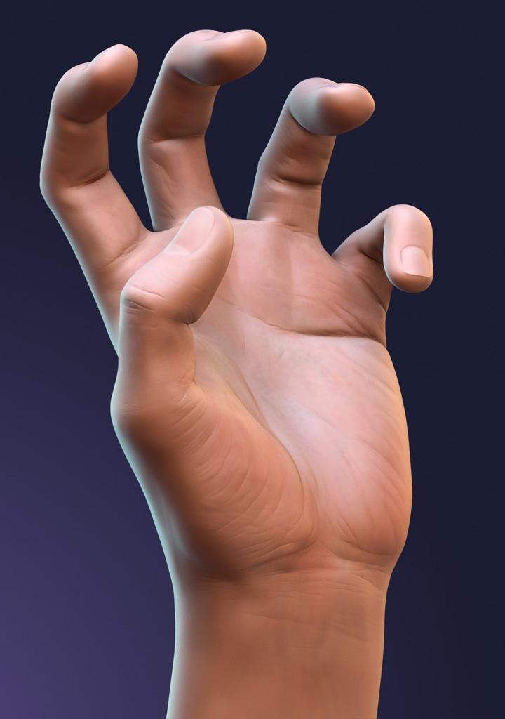 Кисть Руки фото