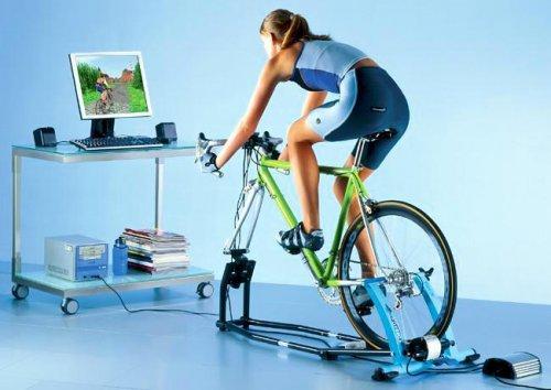 Велотренажер или беговая дорожка для дома?