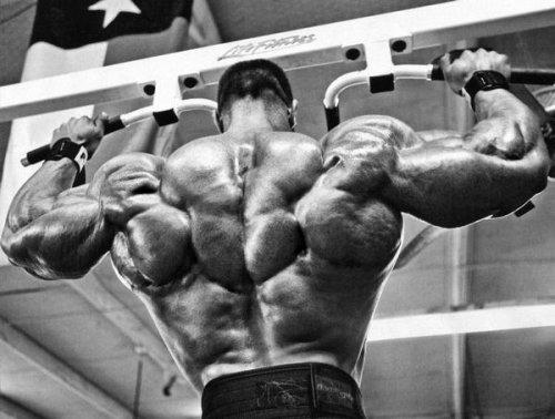 Секреты тренинга спины