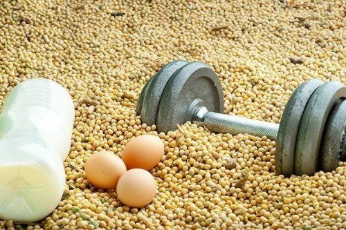 Яйца, лейцин, холин и Ваше сердце