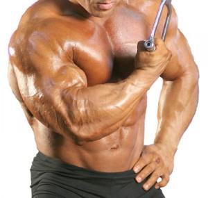 Самые эффективные стероиды для сбрасывания веса глюкокортикостероиды при атопическом дерматите