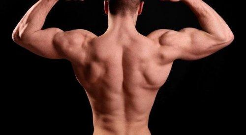 5 лучших упражнений для спины, строящих массу