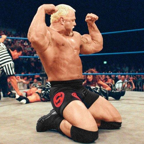 12 лучших телосложений в истории WWE