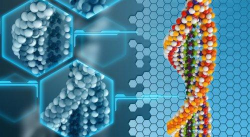 Критерии выбора аминокислот