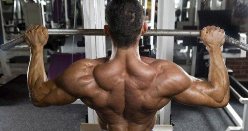 Тренировка спины. Как качать спину правильно